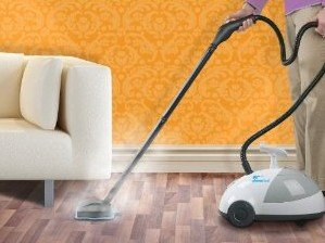 Steammax Steam Cleaner In Action